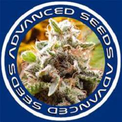 Advanced-Seeds-Logo
